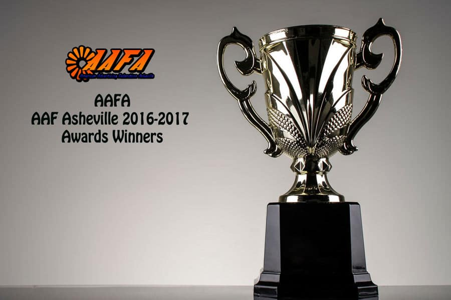 AAF Asheville 2016 2017 Awards Winners